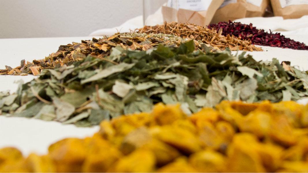 bunte, erlesene Rohstoffe für OLIEBE Pflanzenhaarfarbe im Friseur-Salon Dresden Altstadt